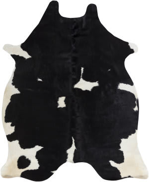 Surya Abington Wilde Black - White Area Rug