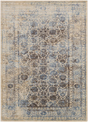 Surya Whitman Serenity Whm8800 Brown Area Rug