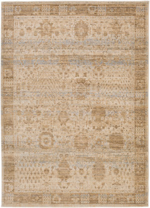 Surya Whitman Serenity Whm8801 Brown Area Rug