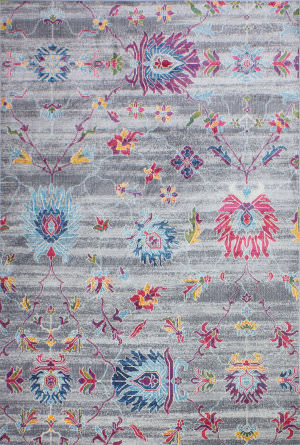 Bashian Charleston C186-Ro24a Grey Area Rug