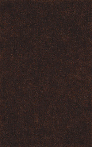 Dalyn Illusions Il69 Chocolate Area Rug