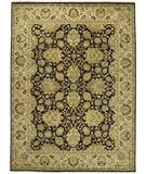 Due Process Jagapatti Agra Brown-Gold Area Rug