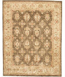 Due Process Peshawar Lavar Brown - Fawn Area Rug