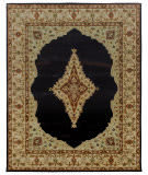 Due Process Tufted Mohtesham Open Field Black - Beige Area Rug