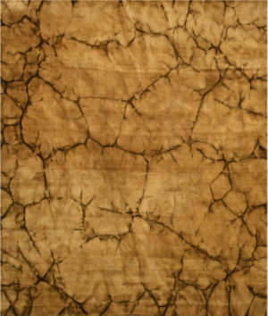 Eastern Rugs Dip Dyed Ka100bn Brown Area Rug