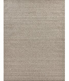 Exquisite Rugs Woven Earth Hand Woven 3425 Beige Area Rug
