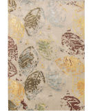 Famous Maker Transitional Pbw-9682c Light Gray Area Rug