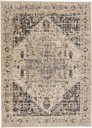 Feizy Grayson 3579f Charcoal - Beige Area Rug
