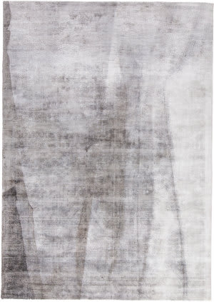 Feizy Emory 8664f Gray Area Rug