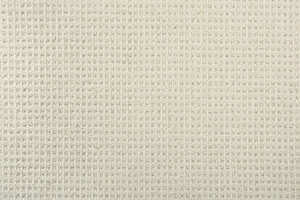 Hagaman Elements Canyon Ivory Area Rug