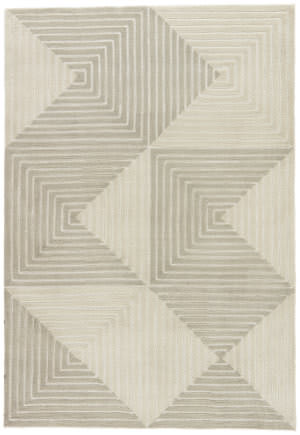 Jaipur Living Fusion Tegan Fn58 Gray - Cream Area Rug