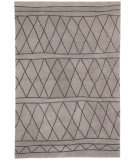 Jaipur Living Fusion Pax Fn59 Light Gray - Dark Gray Area Rug