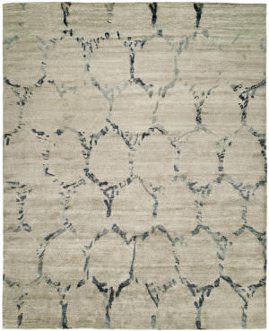 Famous Maker Insight 100942 Gray Beige Area Rug
