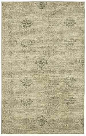Karastan Design Concepts Revolution Wexford Lebasque Area Rug