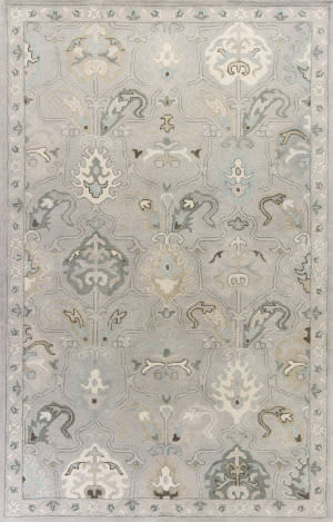 Kas Jaipur 3868 Light Grey Area Rug