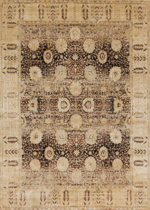Loloi Anastasia Af-09 Coffee - Gold Area Rug