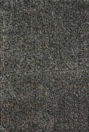 Loloi Carrera Shag Cg-02 Salt And Pepper Area Rug