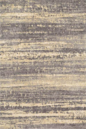 Loloi Discover DC-02 Grey / Gold Area Rug