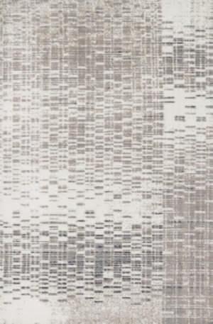 Loloi Discover DC-03 Ivory / Light Grey Area Rug