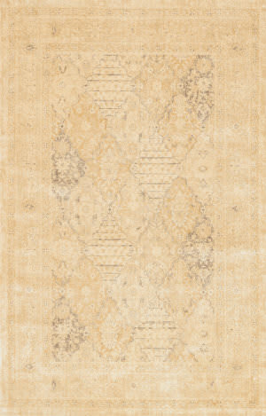 Loloi Nyla Ny-22 Light Gold Area Rug