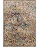 Rugstudio Sample Sale 125634R Ivory - Multi Area Rug