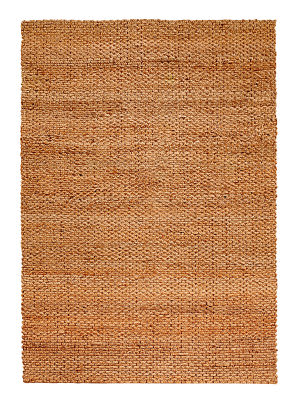 LR Resources Holden Lr03304 Natural Area Rug