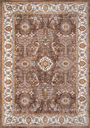 Momeni Brighton Br-02 Brown Area Rug