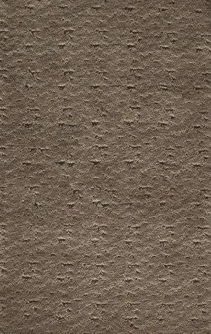 Famous Maker Costin 91916 Brown Gray Area Rug