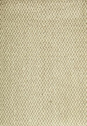 Famous Maker Esste 91901 Tan Area Rug