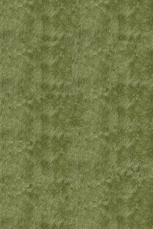 Momeni Luster Shag Ls-01 Apple Green Area Rug