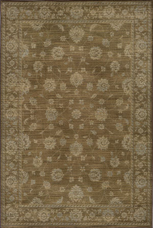 Momeni Belmont Be-02 Brown Area Rug