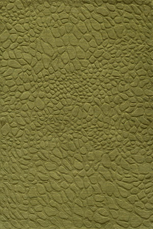 Momeni Gramercy Gm-11 Grass Area Rug