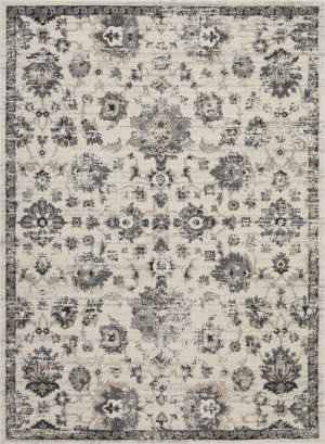 Nourison Fusion Fss15 Cream - Grey Area Rug