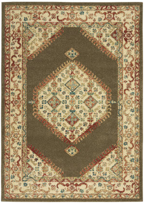 Nourison Traditional Antique Trq03 Brown Area Rug