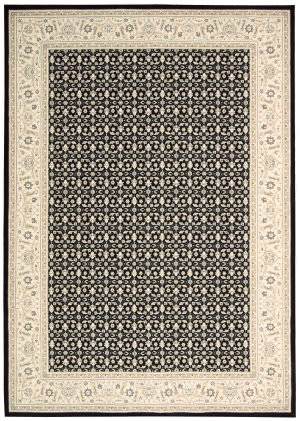 Nourison Persian Empire Pe26 Black Area Rug