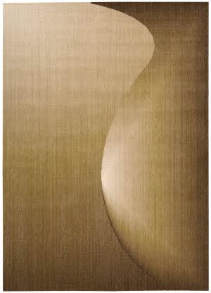Nourison Radiant Arts RA-01 Amber Area Rug