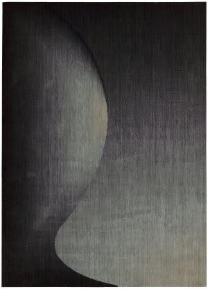 Nourison Radiant Arts RA-01 Onyx Area Rug