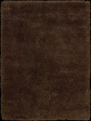 Nourison Splendor SPL-1 Chocolate Area Rug