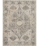 Nourison Fusion Fss11 Cream - Grey Area Rug