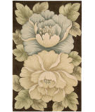 Nourison Tropics TS-09 Brown Area Rug