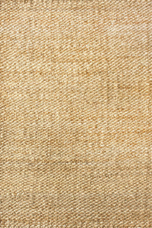 Nuloom Hand Woven Hailey Jute Natural Area Rug