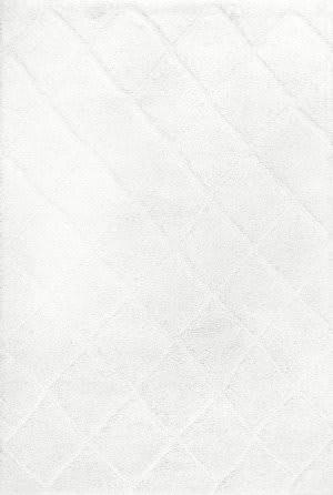Nuloom Deloise Trellis Shag White Area Rug