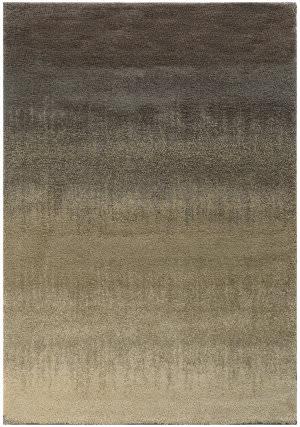 Oriental Weavers Covington 002j6 Grey / Beige Area Rug