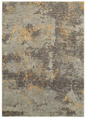 Oriental Weavers Evolution 8025b Grey - Gold Area Rug