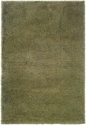 Oriental Weavers Superiority 520D4  Area Rug