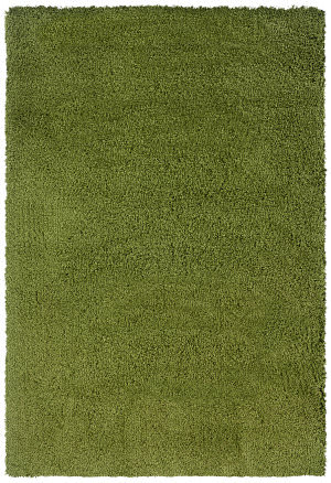 Oriental Weavers Superiority 520G4  Area Rug