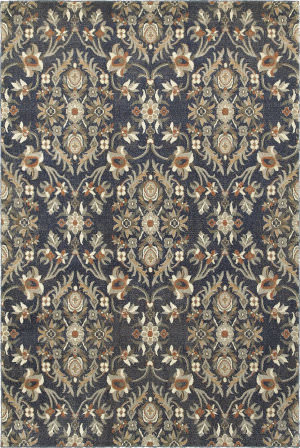 Oriental Weavers Pasha 6548s Blue - Brown Area Rug