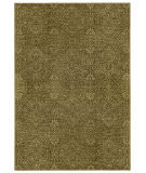 Tommy Bahama Voyage 091p0 Green Area Rug