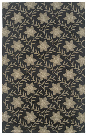 Rizzy Country Ct0912 Black Area Rug