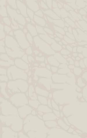 Rizzy Arden Loft-Sandhurst Sh218b Beige Area Rug